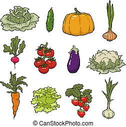 Set of vegetables on a white background vector illustration