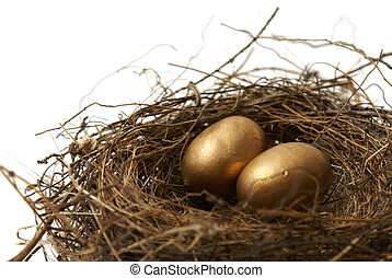 Retirement Fund - A couple gold nest eggs for the idea of a...