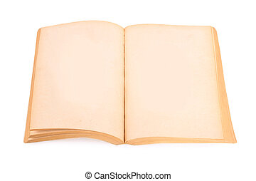 old book with blank page