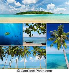 Beautiful collage of tropical images, beach, palm trees,...
