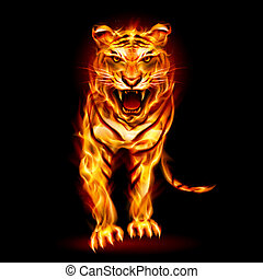Fire tiger Illustration on black background for design