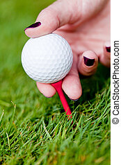 golf ball and iron on green grass detail macro summer...