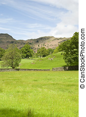 Lake District National Park - Farmland in Lake District...