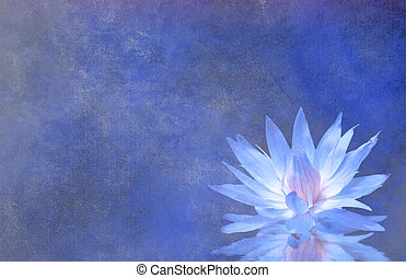 Lotus Blossom Textured Background