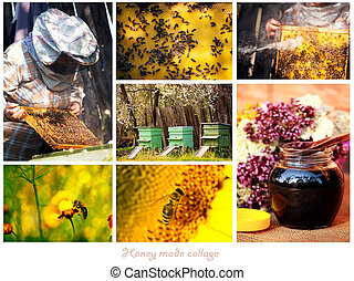 honey collage - honey made preparation proces conceptual...