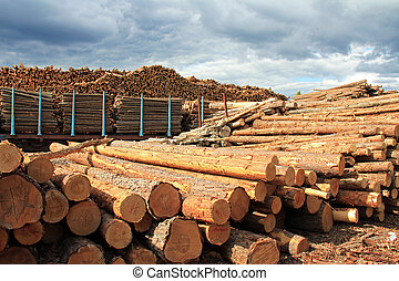 Lumber Yard - Lumber yard with stacks of wooden longs and...