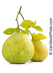 Two Green pomelo fruit on white Backgorund - Two Green...