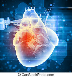 Human heart beats - Virtual image of human heart with...