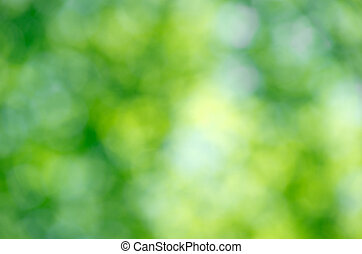 green background - Nature green abstract bokeh background