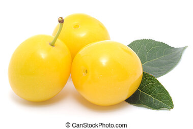 yellow plums with a leaf isolated on white background