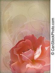 Rose Vector Vintage Old Paper Textured Background