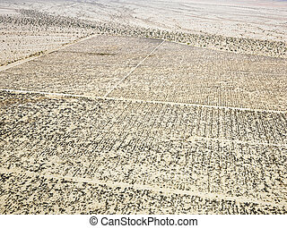 Desert with grid pattern. - Aerial view of remote California...