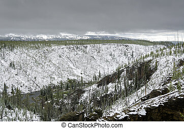 snow in summer in Yellowstone National Park in Wyoming