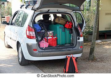 dois, verde, malas, muitos, sacolas, car