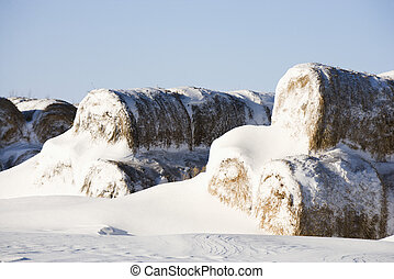 Snow on hay bales. - Snow covered pile of hay bales.