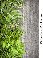 Fresh herbs over grey wooden background