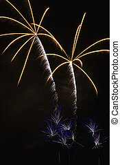 Fireworks display. - Colorful fireworks exploding in night...