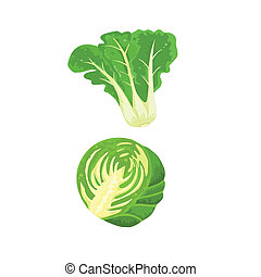 cabbage and vegetables