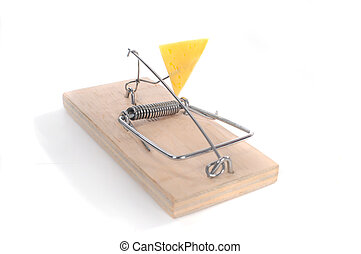 Mousetrap with piece of cheese