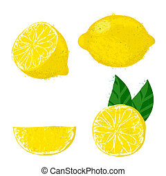 Vector illustration of lemon fruits. - Set of four images...