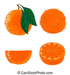 Vector illustration of orange fruits - Set of four images...