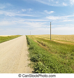 Dirt road and farmland - Dirt road through rural farmland of...