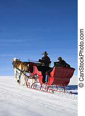 Sleigh ride - Mid adult man driving horse drawn sleigh with...