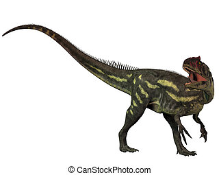 Allosaurus Isolated - Allosaurus was a large theropod...