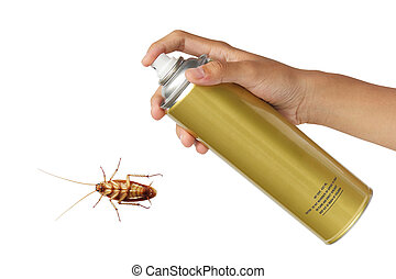 Cockroach spray with spray cans isolated over white...