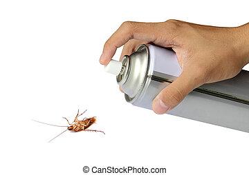 cucaracha, rociar, rociar, latas, encima, blanco, Plano de...