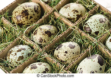 Speckled eggs. - Speckled eggs packed in separate...