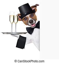dog toasting with service tray behind  a white placard