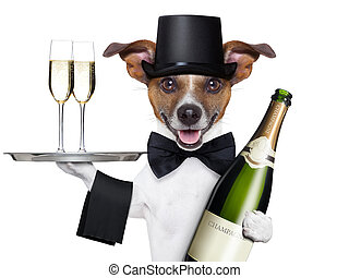 dog toasting new years eve with champagne and service tray