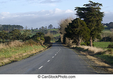 Empty rural road - An empty rural road in northland, New...
