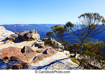 View from Flat Rock Kings Tableland Wentworth Falls Blue...