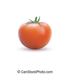 photo realistic image of red tomato on white