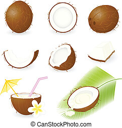 Icon Set Coconut - Vector illustration of coconut