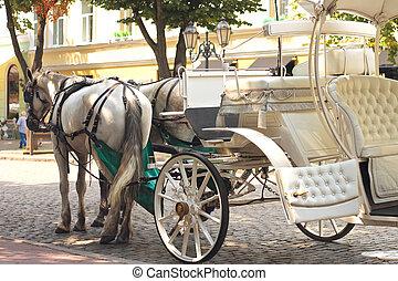 cavalos, desenhado, carruagem, verão, cidade, rua
