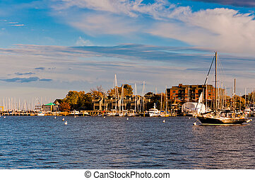 Boats in the harbor of Annapolis, Maryland