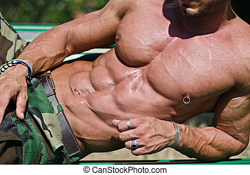Bodybuilder's torso, pecs, abs, leaning on a side -...