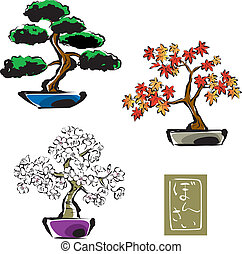 Bonsai pinetree, japanese maple,sakura