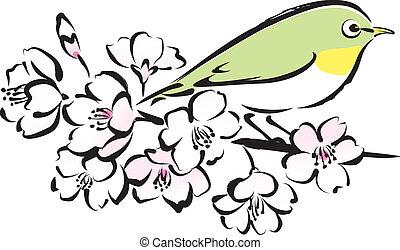 Sakura and white eye bird, cherry blossoms