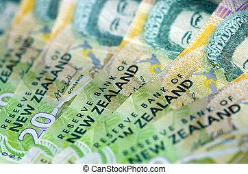 Novo, Zelândia, moeda corrente, dólar, notas,...