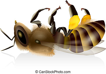 Dead Honey Bee - Illustration of an isolated dead honey bee...