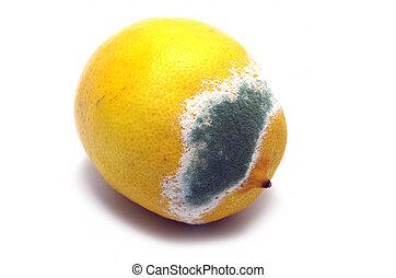moldado, limão