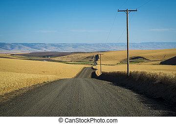 Road, wheat fields, Washington State