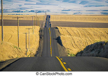 Road, wheat fields, Washington State - Road through wheat...