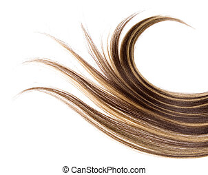 long hair - long brown hair style on white isolated...