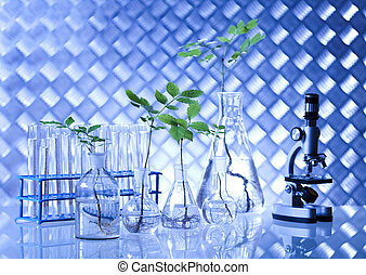 Plants in laboratory