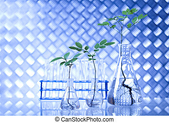 Scientist working in a laboratory - Scientist working in a...